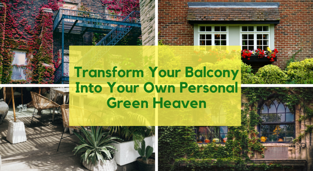Transform Your Balcony Into Personal Green Heaven | Bagbani | Gardening Blogs