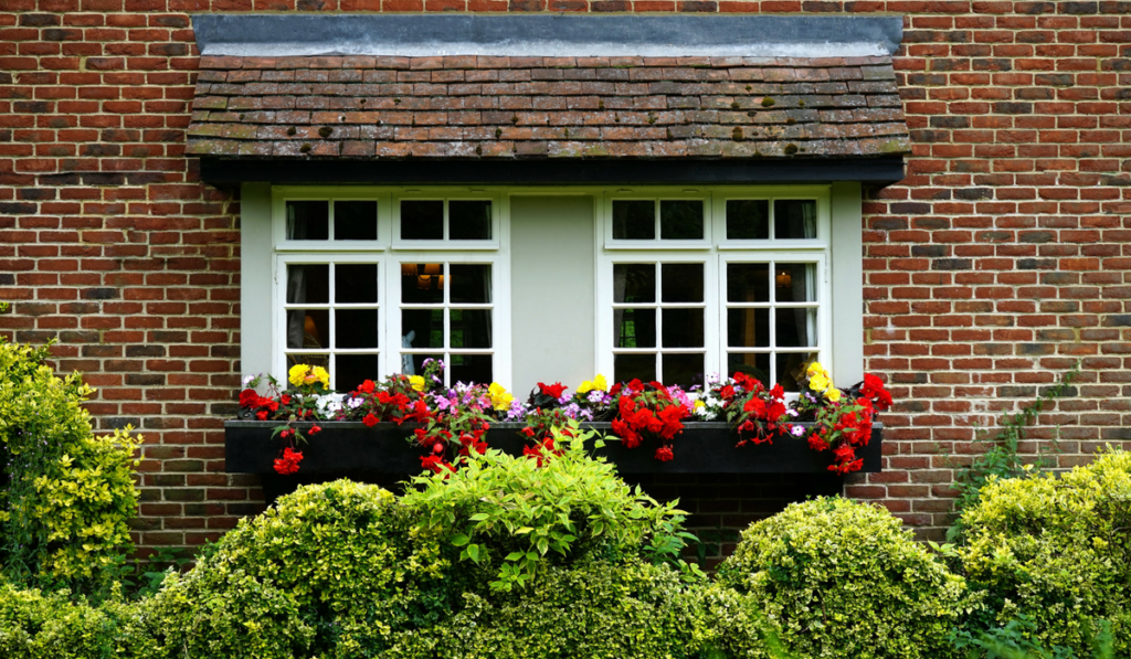 Transform Your Balcony Into Your Own Personal Green Heaven   Bagbani   Gardening blogs