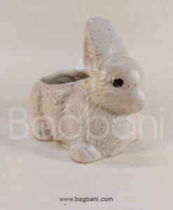 Small Rabbit Scullant pot_H 3inch_W 4 Inch-9